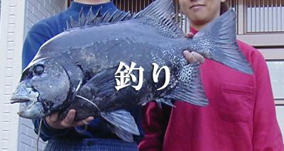 屋久島で釣りを楽しむ